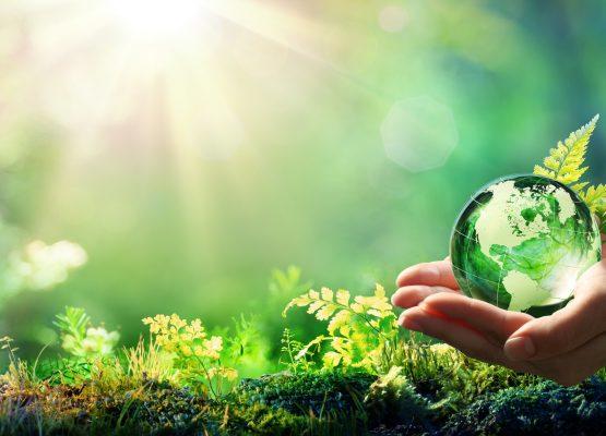 Consumi e virus: perché oggi la sostenibilità ci tocca da vicino